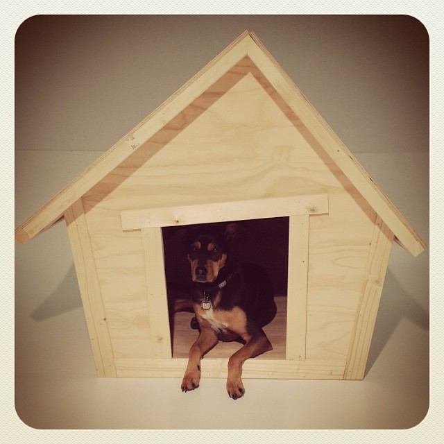 Ana White   crooked dog house - DIY Projects on beach dog house, cold dog house, clever dog house, fat dog house, rainbow dog house, golden dog house, french dog house, 2 story dog house, bridge dog house, island dog house, crowded dog house, silver dog house, circular dog house, chain dog house, clear dog house, high dog house, whimsical dog house, crystal dog house, east dog house, iron dog house,