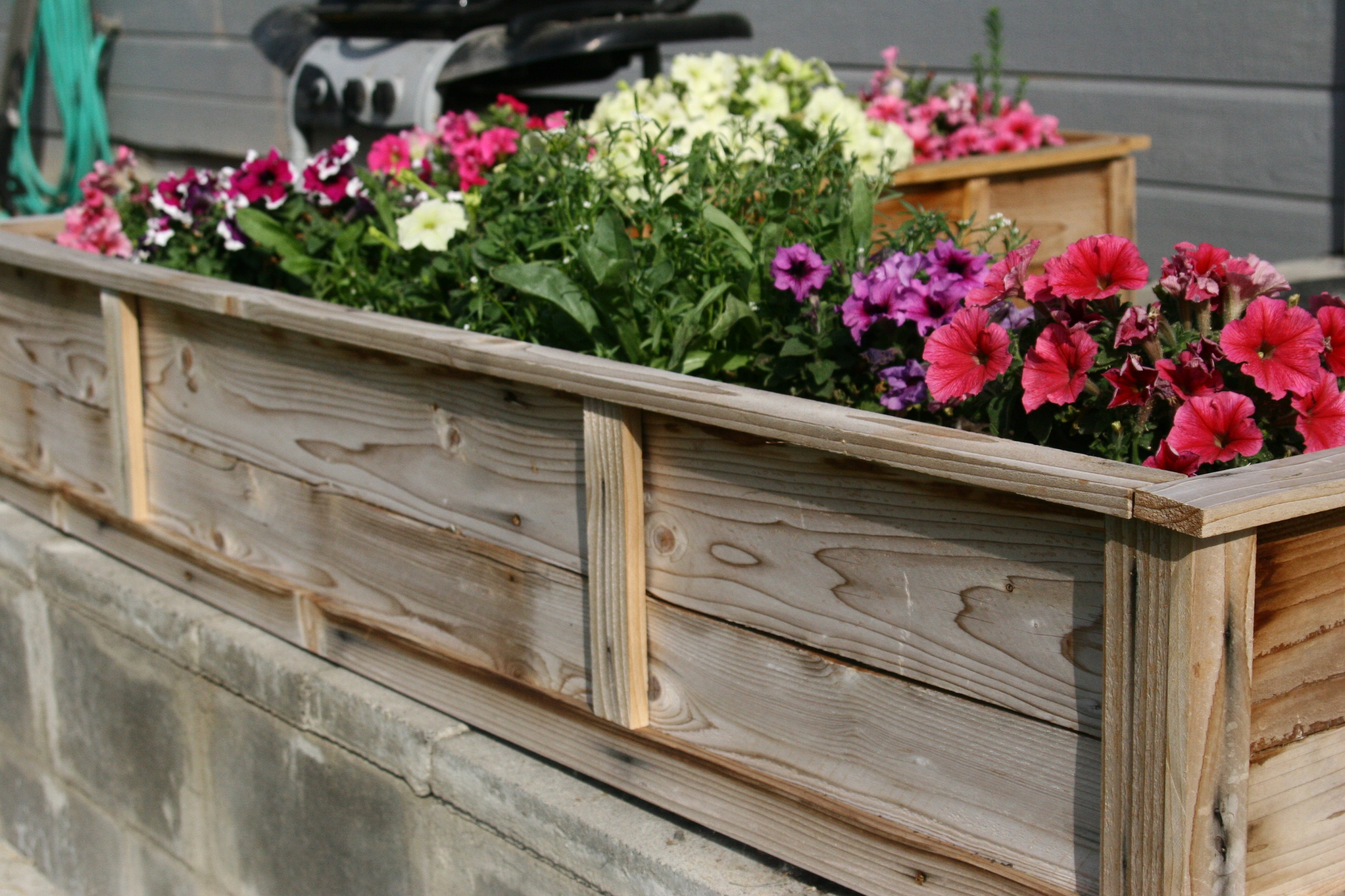 Ana white raised flower planter beds diy projects for Flower garden box ideas