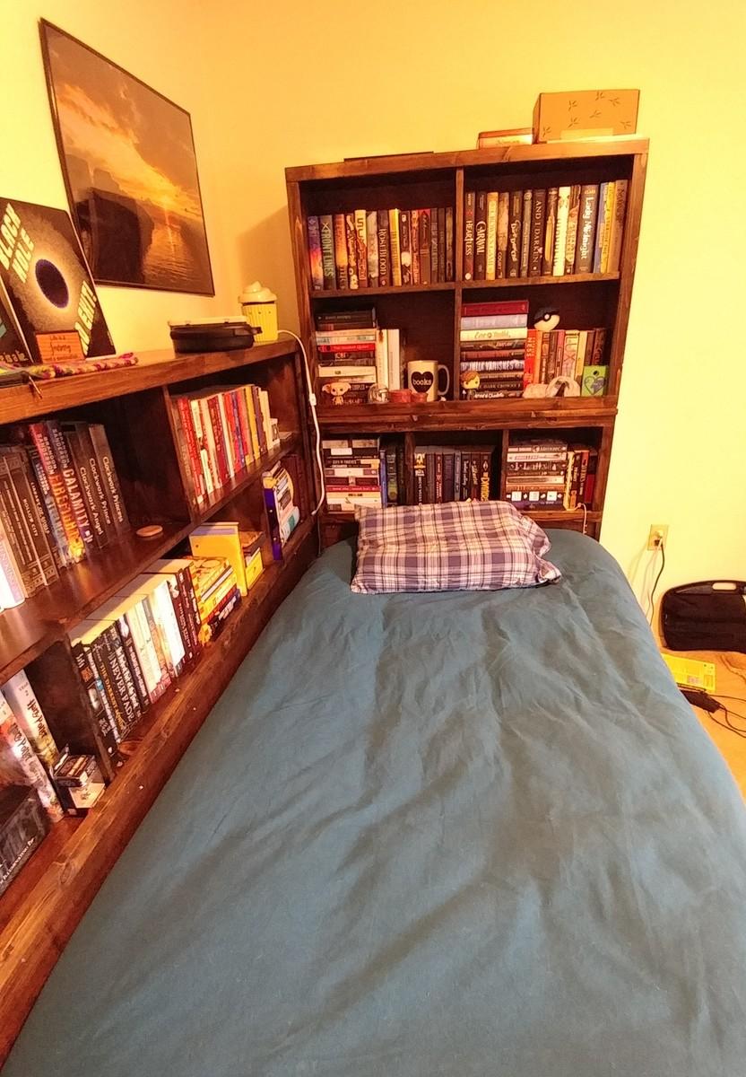 Storage Daybed With Bookshelf Surround Ana White