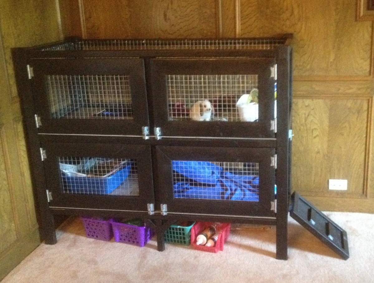 Ana white two story rabbit hutch diy projects - How to make a rabbit cage ...