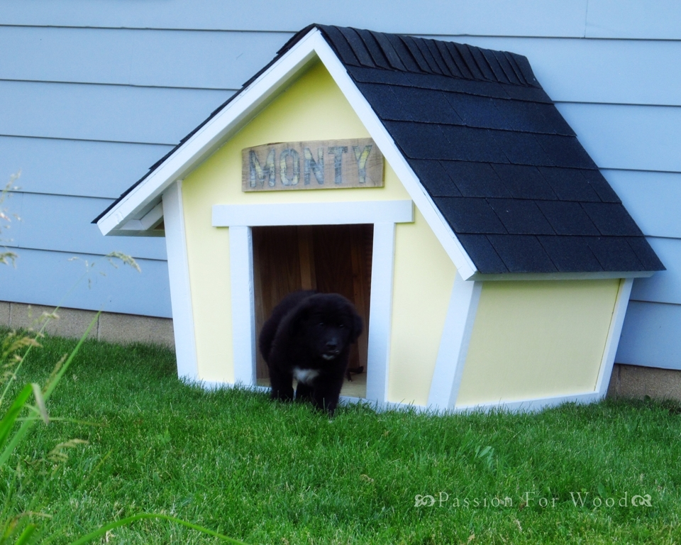 Free Dog House Plans for Pooches