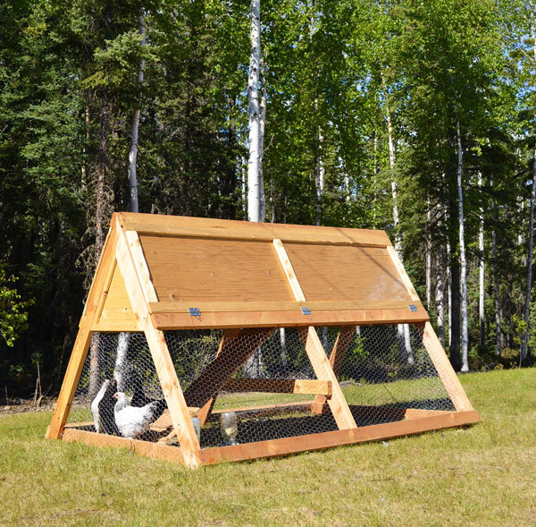 how to build a frame chicken coop free plans from ana whitecom diy for less than 100