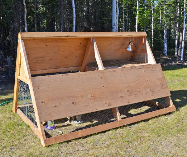 Ana white a frame chicken coop diy projects for How to build a chicken hutch