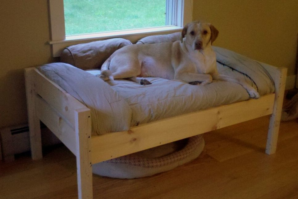 Ana White Doggie Daybed Diy Projects