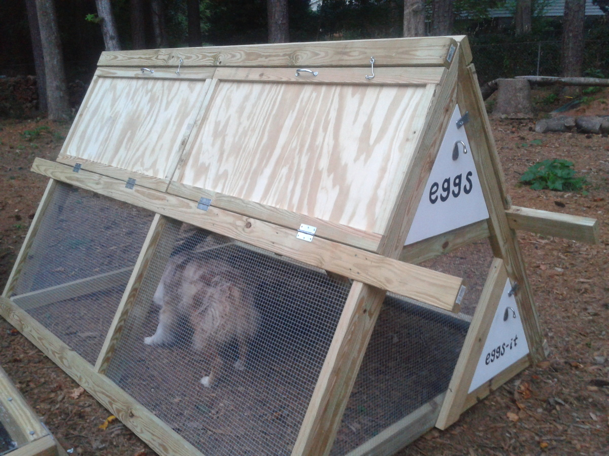 ana white a frame chicken coop with modifications diy projects