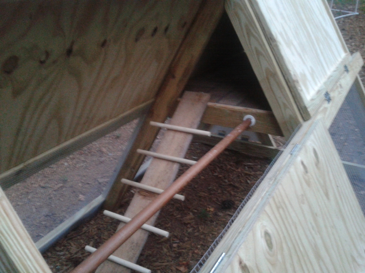 additional photos about this project we followed the plans for the a frame chicken coop