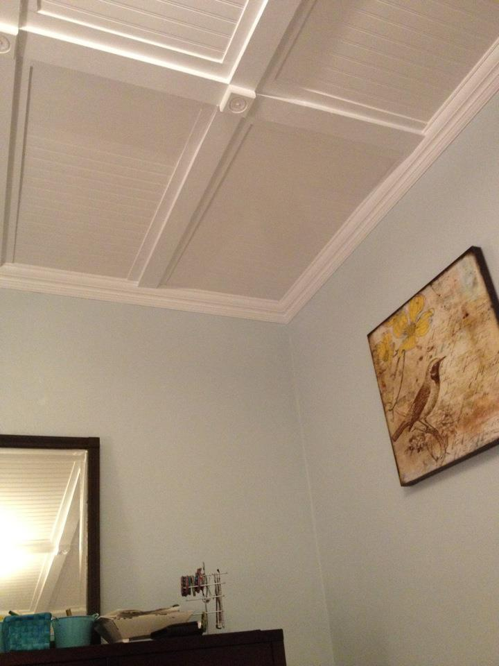 Ana White Plaster Ceiling Renovation Upgrade Diy Projects