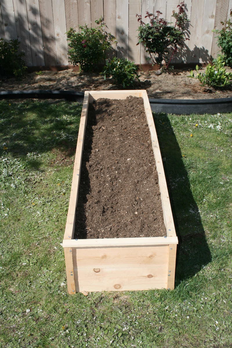 Ana White Raised Cedar Garden Beds Diy Projects