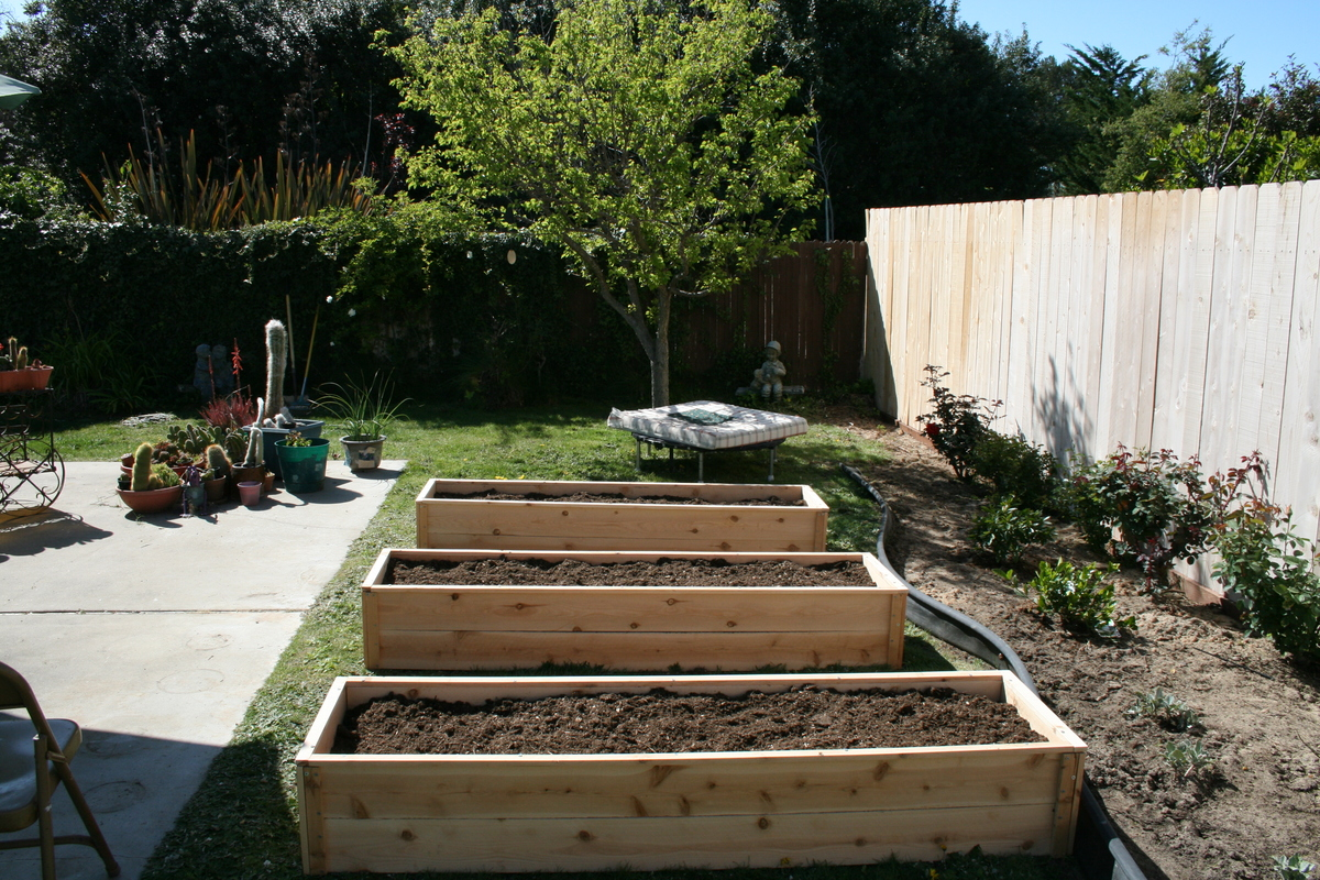 to bed with raised fill garden step steps how wikihow beds pictures