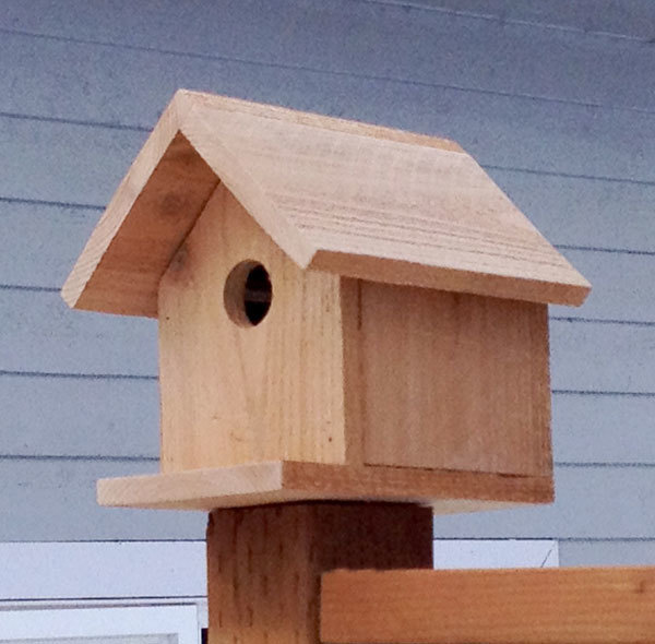 woodwork birdhouse plans kids free pdf plans