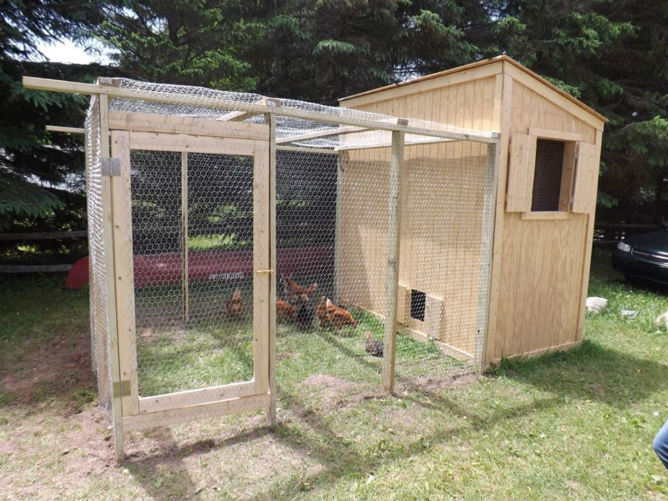 My Incredible Chicken Coop And Run!