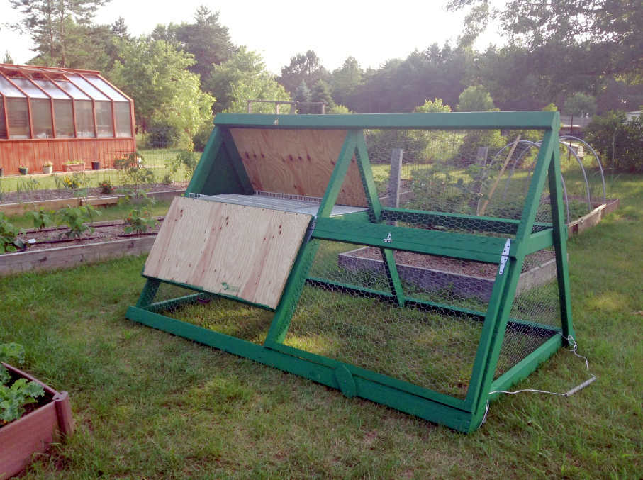 Predator Proof Chicken Coop Door Predator Proofing Your