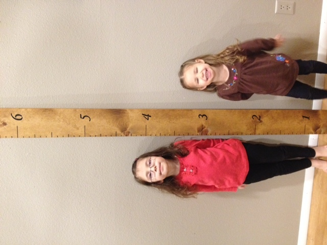 Ana White Growth Chart Ruler Diy Projects