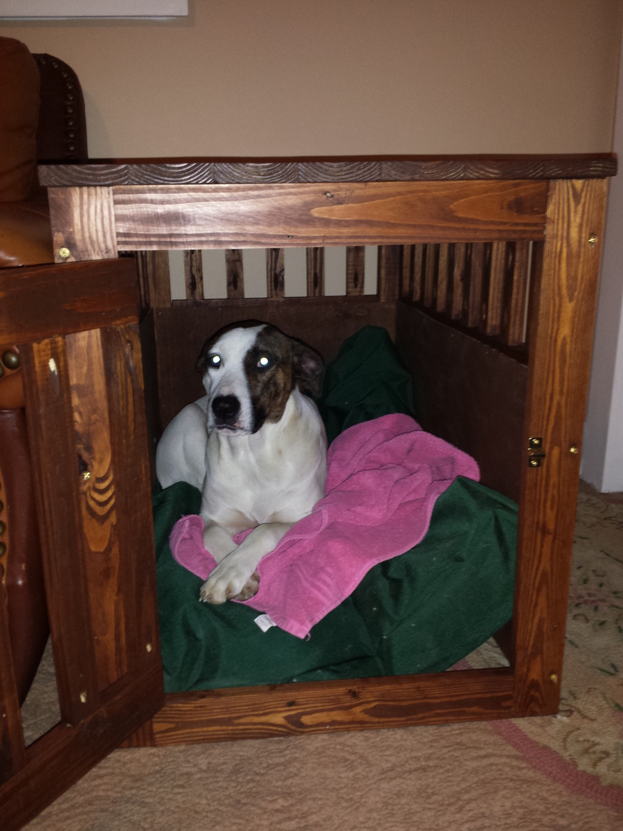 Ana White Large Dog Crates For Rocket Hounds Diy Projects