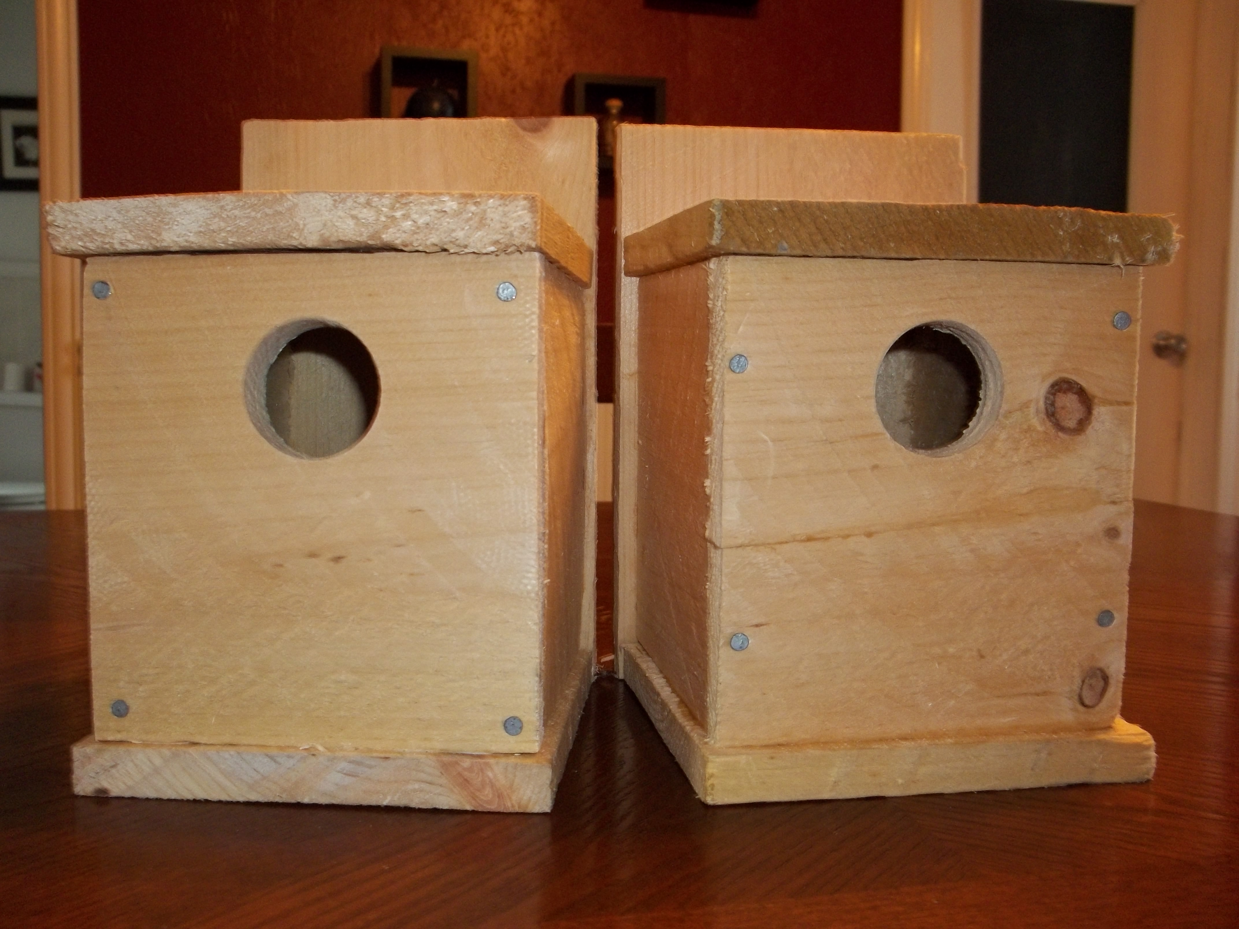 Ana white 59 birdhouses diy projects solutioingenieria Images