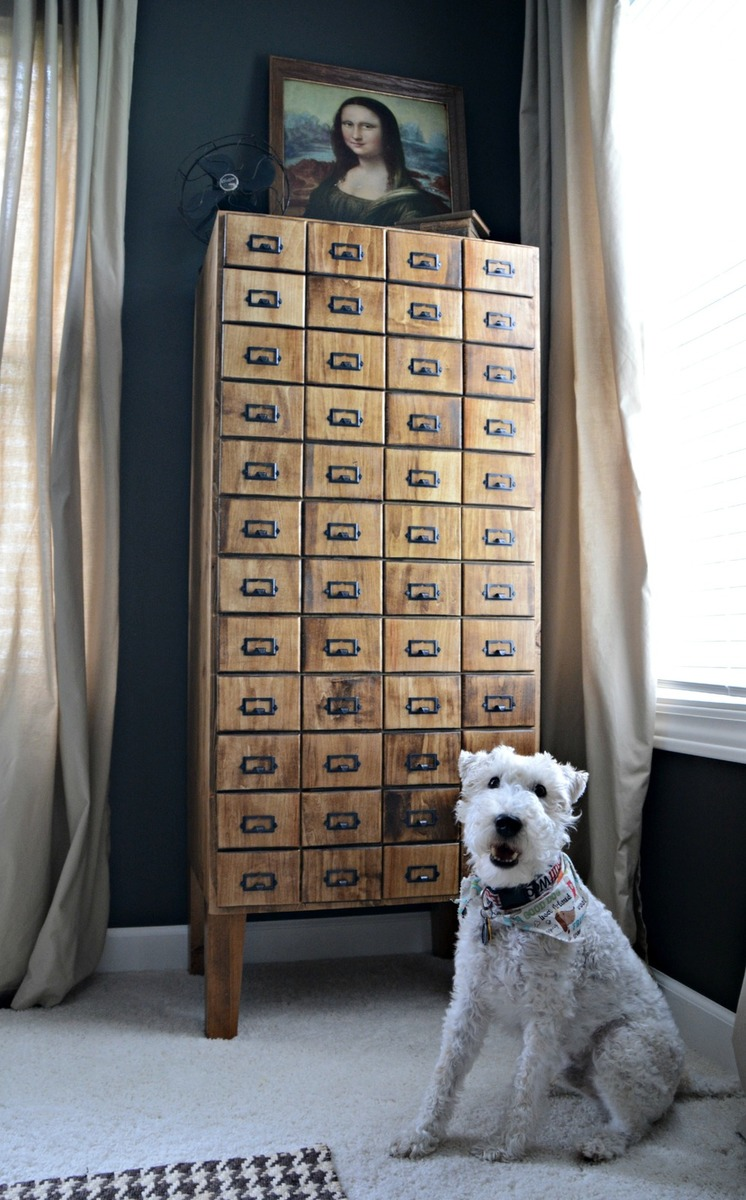http://www.ana-white.com/2014/08/plans/card-catalog-cabinet-feature-decor-and-dog