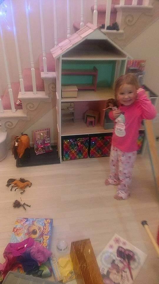 Doll House Amp Barn Bookshelves For Fashion Dolls And