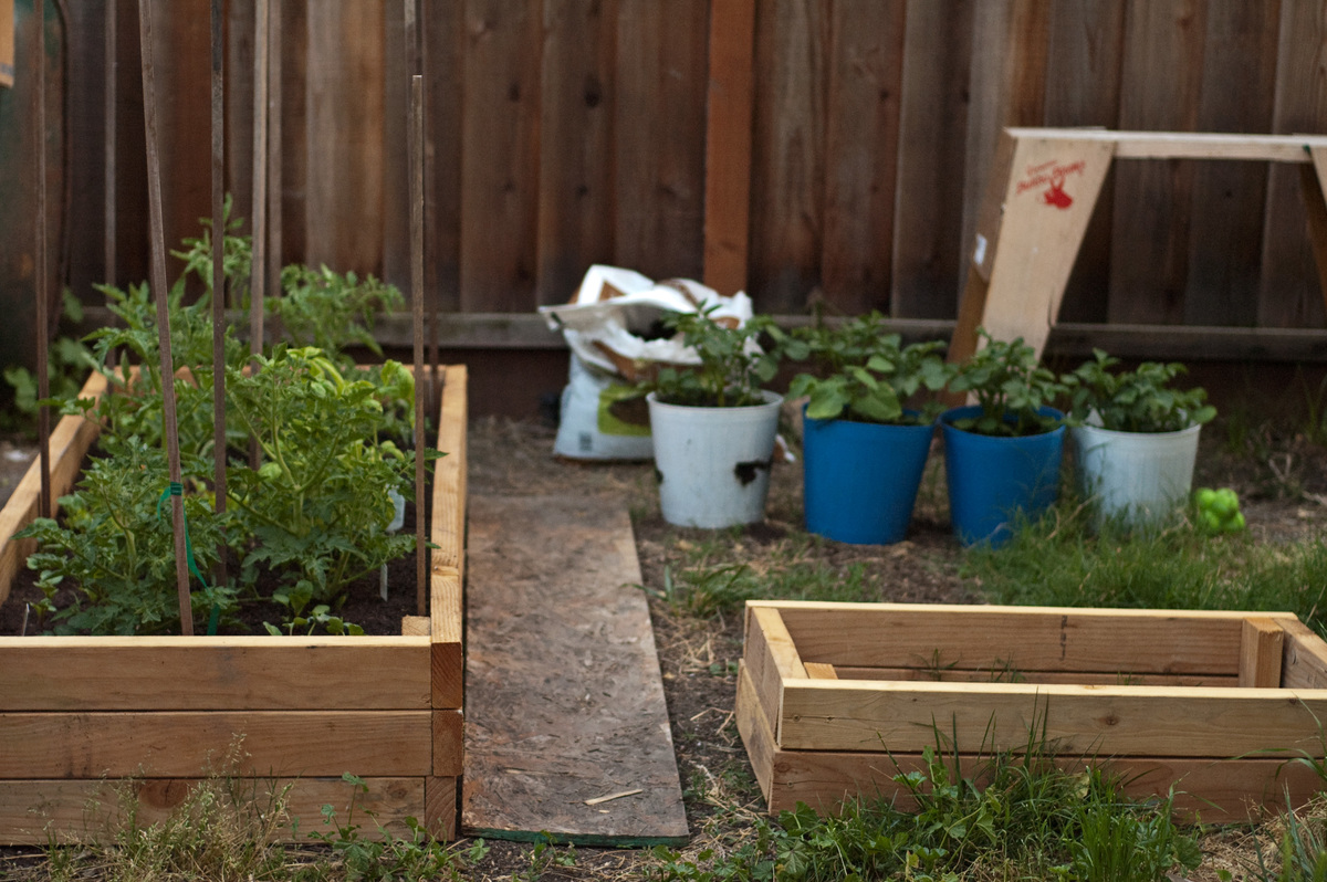 Ana white 2x4 garden beds diy projects solutioingenieria Image collections
