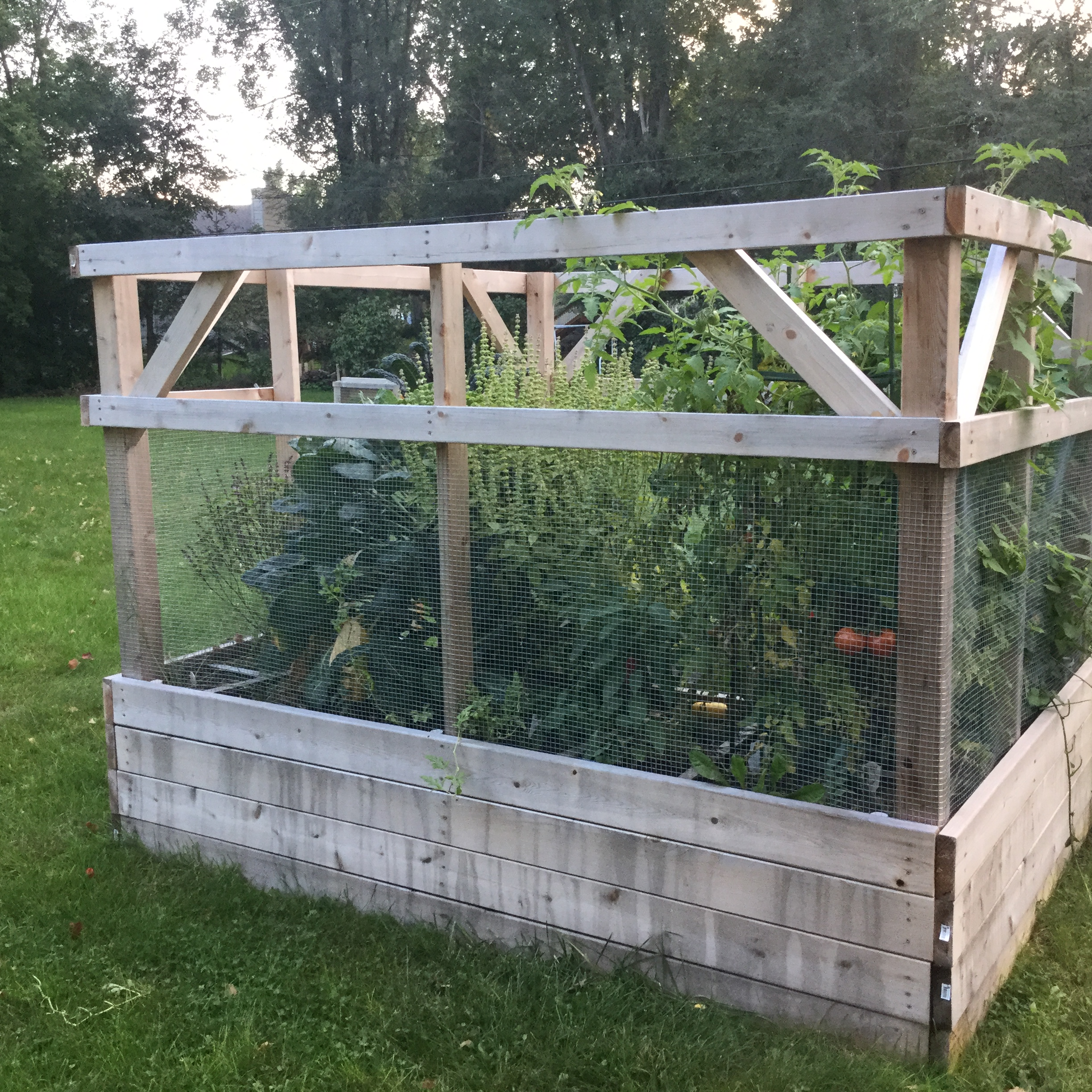Ana White Garden Enclosure DIY Projects