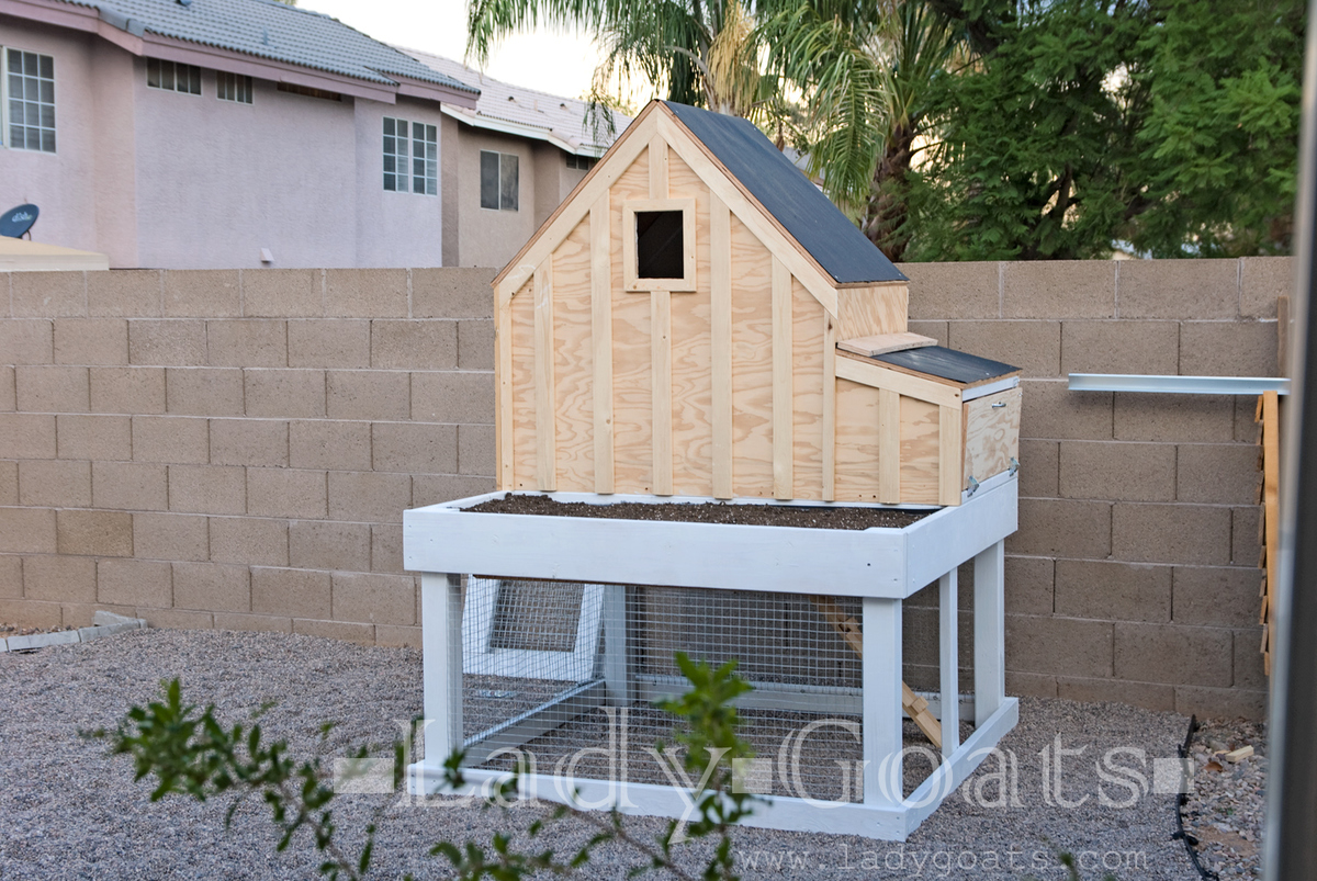 Small Chicken Coop With Planter Clean Out Tray And