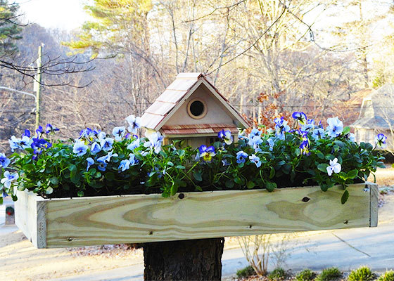 ana white | birdhouse planter featuring home depot garden club - diy