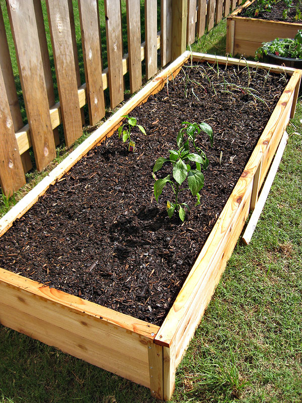 Ten Dollar Cedar Raised Garden Beds Design