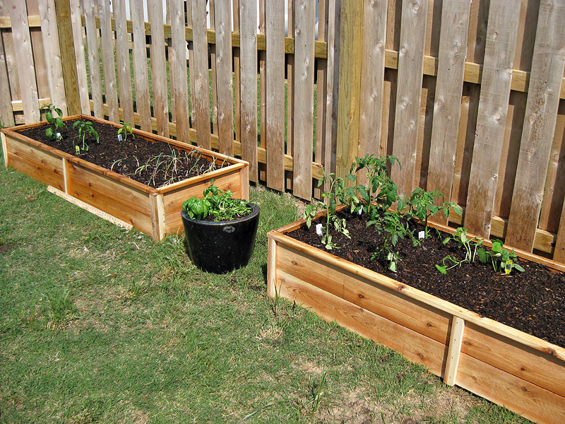 Ana White Ten Dollar Cedar Raised Garden Beds DIY Projects