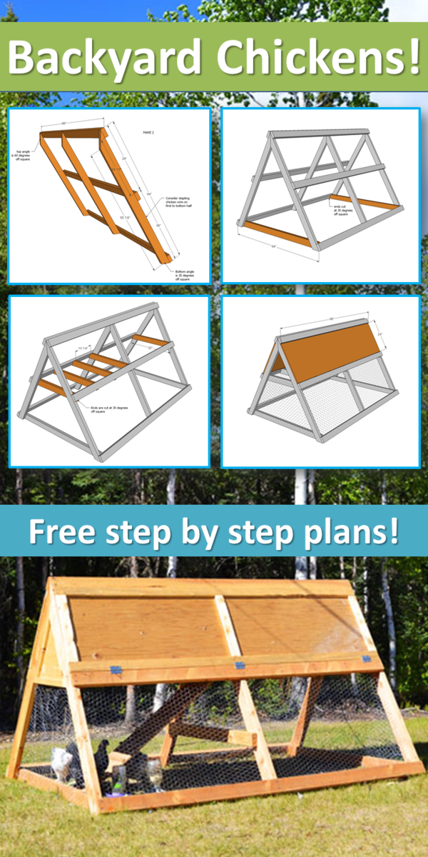 a frame chicken coop plans