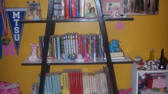 Ipex Bookcase   Ana White