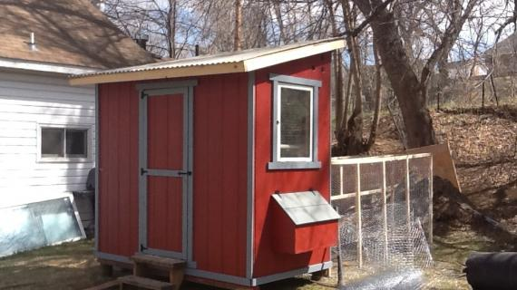 Shed Chicken Coop | Ana White
