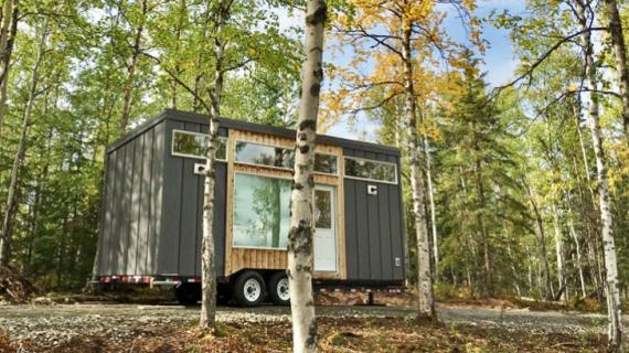 ana white tiny house in birch forest