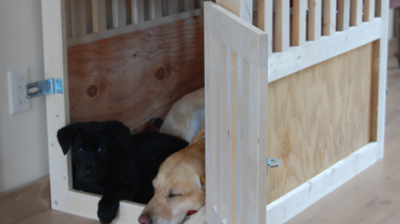 diy wood pet kennel
