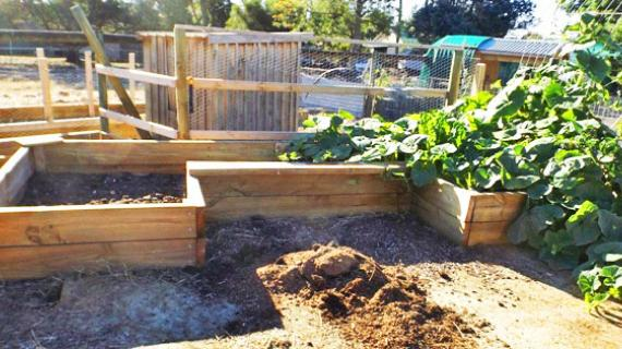 DIY raised garden beds large